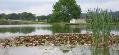 Présentation de Chamborêt.